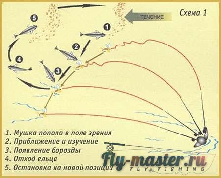 ловля рыбы на муху с поплавком