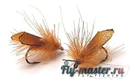имаго ручейника (adult caddis)