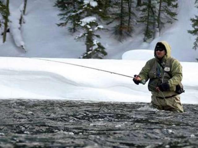 Как изменяются стоянки рыбы в зависимости от температуры воды