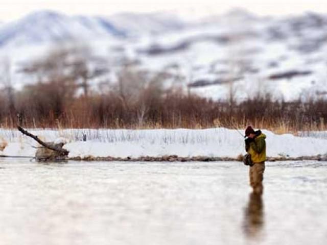 Последние круги на воде - ловля нахлыстом на сухую мушку и эмеджер в конце сезона