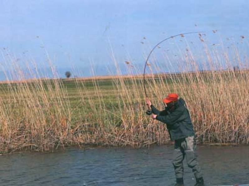 В дельту волги на weekend - рыбалка нахлыстом